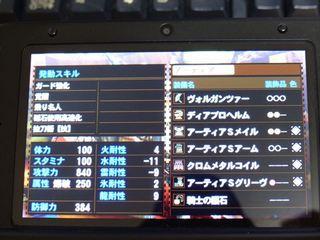 P1010025_R.JPG